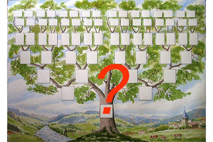 Как сделать родословное древо семьи